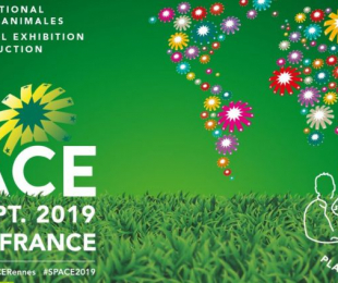 SPACE 2019 - RENNES (35)